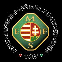 mefs_logo_menu